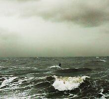 Intrepid Windsurfer by Roz McQuillan