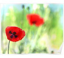 poppy poetry Poster