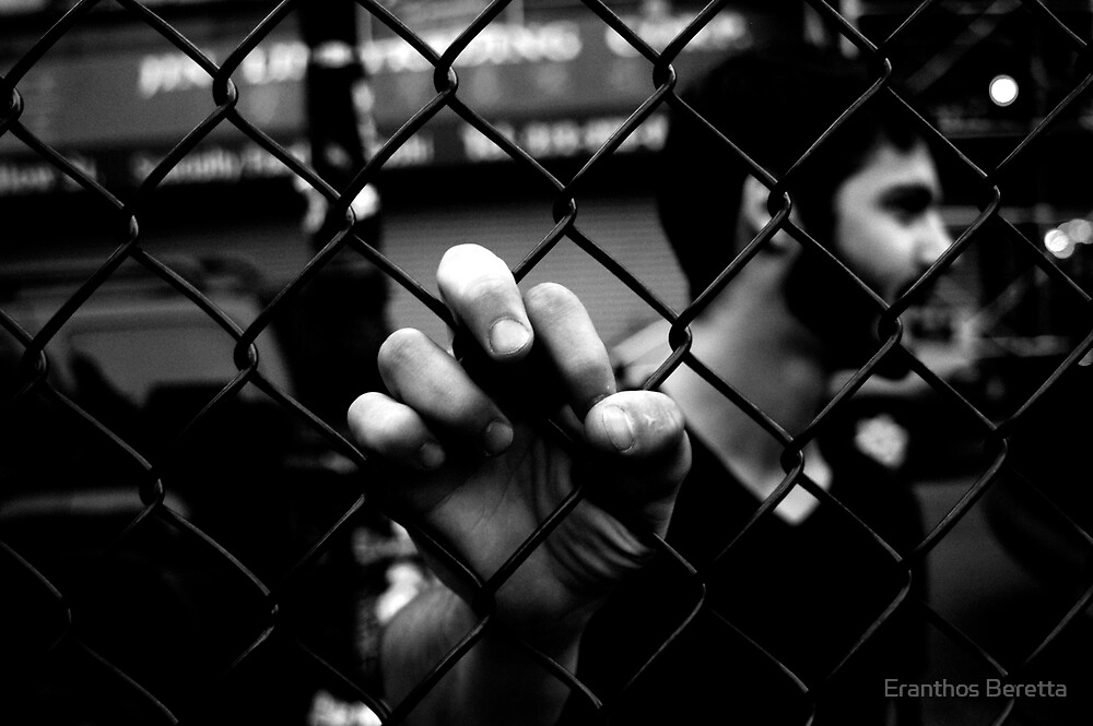 Don't Fence Me In by Eranthos Beretta