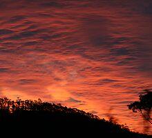 Tasmanian bushfire Sunset by hageyamasan