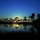 Sunrise at the  wildlife management area by kathy s gillentine