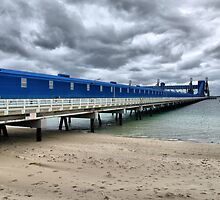 CBH Grain Terminal Conveyor - Kwinana Beach by Jon Staniland