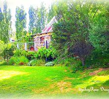 Lavendular Farm Daylesford #14 Victoria, Australia by SpikeyRose