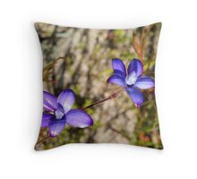 Pink Enamel orchids (elythranthera emarginata) Throw Pillow