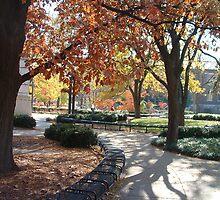 Autumn on Campus by Michele Markley