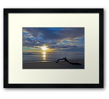 Driftwood at Sunrise Framed Print