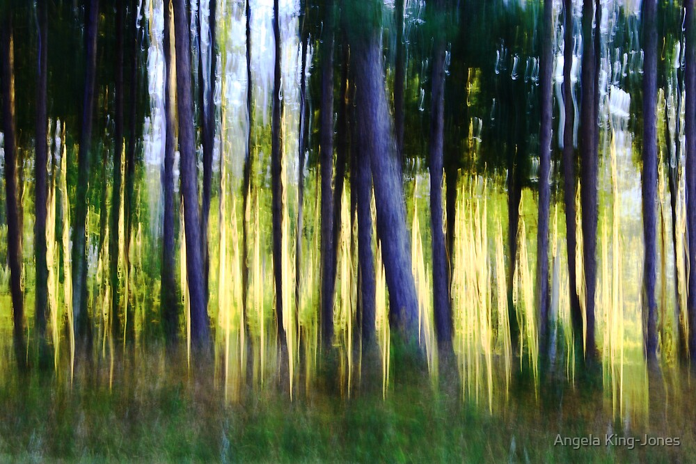 Watercolor forest by Angela King-Jones
