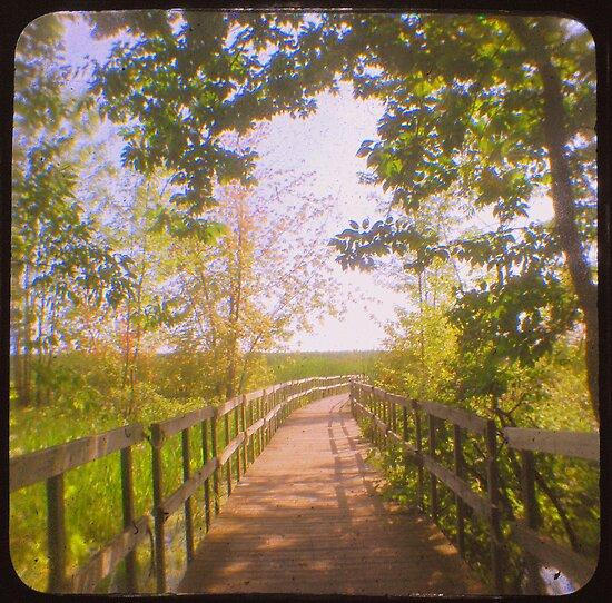 Boardwalk 2 by gbrosseau