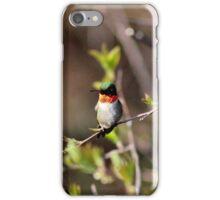 Ruby-throated Hummingbird (Male) iPhone Case/Skin
