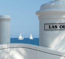 Sailing Las Olas by ggpalms