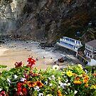 Looking down onto St Agnes Beach Cornwall by DeborahDinah