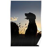 Isobel at sunrise Poster