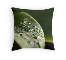 Sequins & Glass Throw Pillow