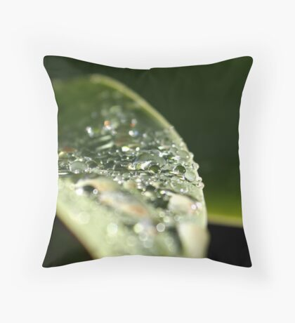 Sequins & Glass Throw Pillow