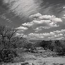 Big Sky Arizona by lucin