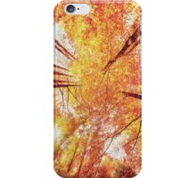 Forest in Autumn iPhone Case/Skin