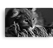 James, black and white Canvas Print