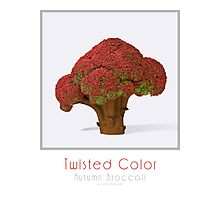 Autumn broccoli Photographic Print