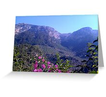 up in the mountains Greeting Card