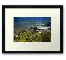 Quaint house in exotic tea plantation Framed Print