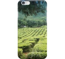 Exotic Asian Tea Plantation iPhone Case/Skin
