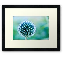 Spike Blue Framed Print