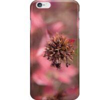 Autumn Macro iPhone Case/Skin