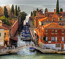 Bridges of Venice by Tom Gomez