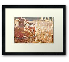 Farm Days Framed Print