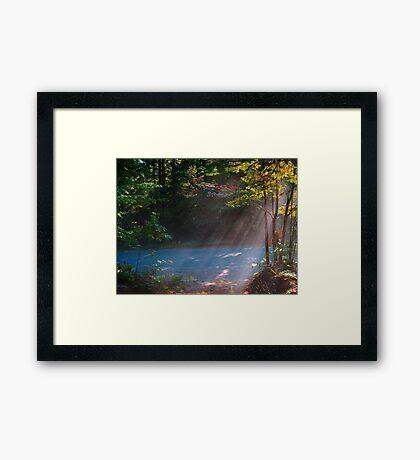 Rays ! Framed Print