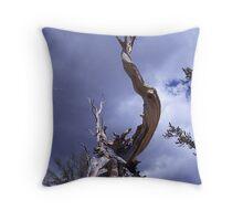 Bristle Pine Cone Tree Throw Pillow