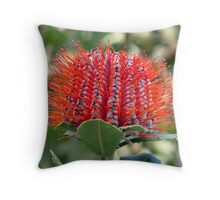 Banksia coccinea Throw Pillow