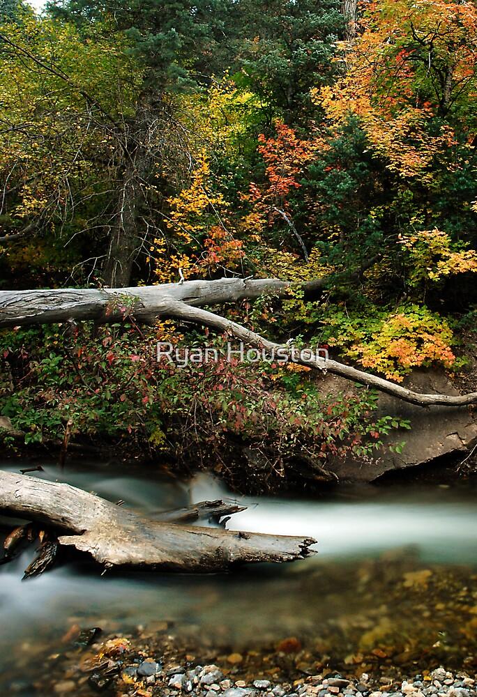 American Fork River - Autumn by Ryan Houston