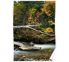 American Fork River - Autumn Poster