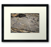 Zorro rocks! Framed Print