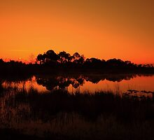 Webb lake by kathy s gillentine