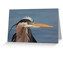 Is this my good side ? Greeting Card