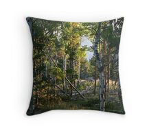 Sunup in the Aspens Throw Pillow