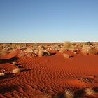 Somewhere in the Simpson Desert... by A1000WORDS