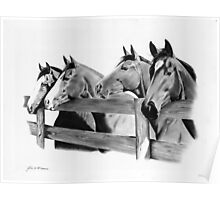 Horse Corral Poster