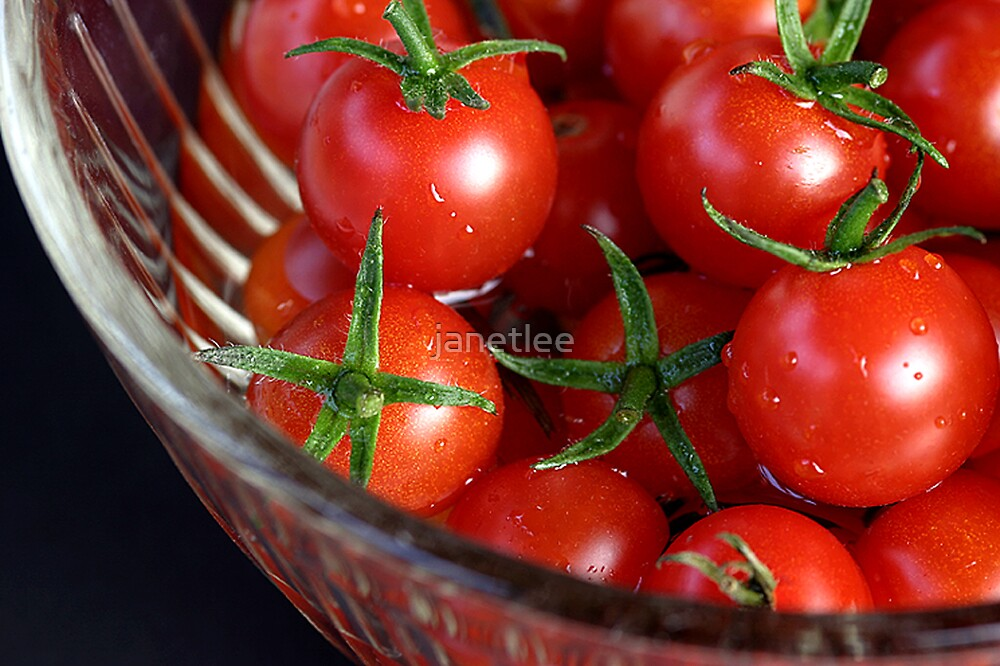 cherry reds by janetlee