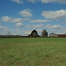 Farmland by kathy s gillentine