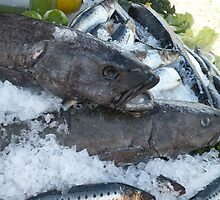 Sablefish by satsumagirl