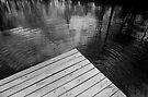 The Spirit of Kripplebush Pond by Yuri Lev