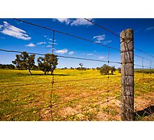 Rural Tranquility Photographic Print
