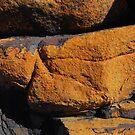 Orange peel rock by GeoGecko