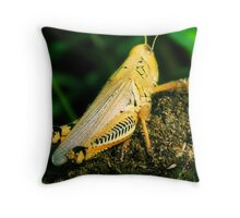 Grass Hopper Throw Pillow