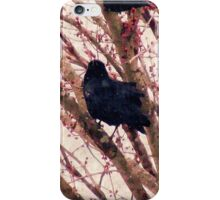 Crow in WInter  iPhone Case/Skin