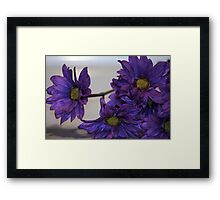 Pretty Bunch Framed Print