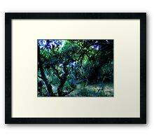 Composition With Gnarled Trees and Tangled Branches in Blue, Black, and Green With Accents of Other Colors #1 Framed Print